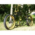 custom bike Nosferatu